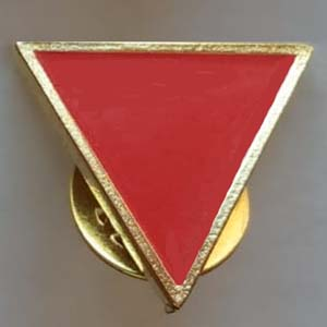 pin triangulo rojo